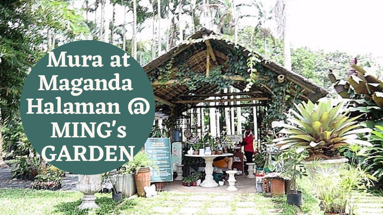 Alamin Ang Presyo Ng Halaman At Ming S Garden Tagaytay Youtube
