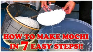 How To Make Mochi In 7 Easy Steps