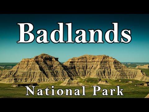 Badlands National Park - Interior, South Dakota - Buffalo, Big Horn Sheep, and Rattlesnakes