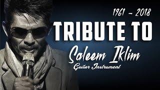 Best Instrument Guitar Tribute To Saleem Iklim