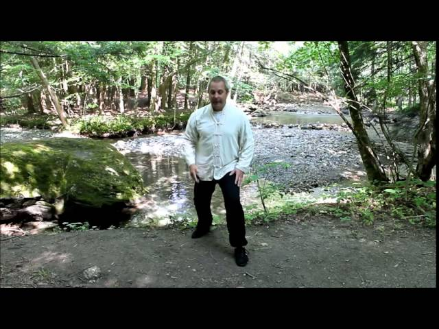 Tai Chi  bow stance