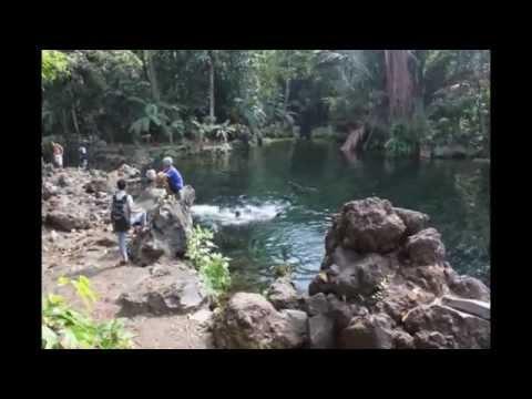 telaga-remis---jawa-barat-|-tempat-wisata-di-indonesia