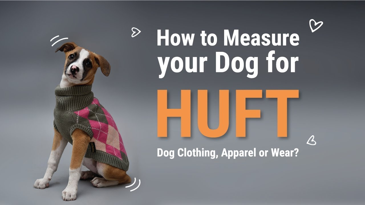 How to Measure your Dog for Heads Up For Tails Dog Clothing, Apparel or  Wear? - Heads Up For Tails
