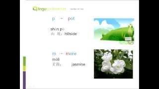 learn chinese pinyin initials b p m f d