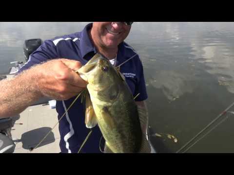 Fletcher Pond - Lake Preview