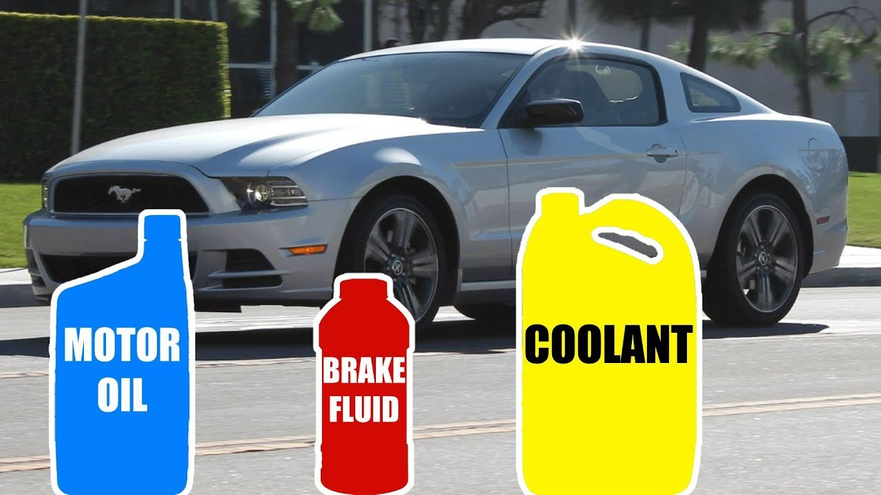 Motor Oil Fluid Type For Ford Mustang 2005 2017