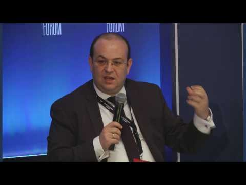 Debt VS Growth I Delphi Economic Forum 2017