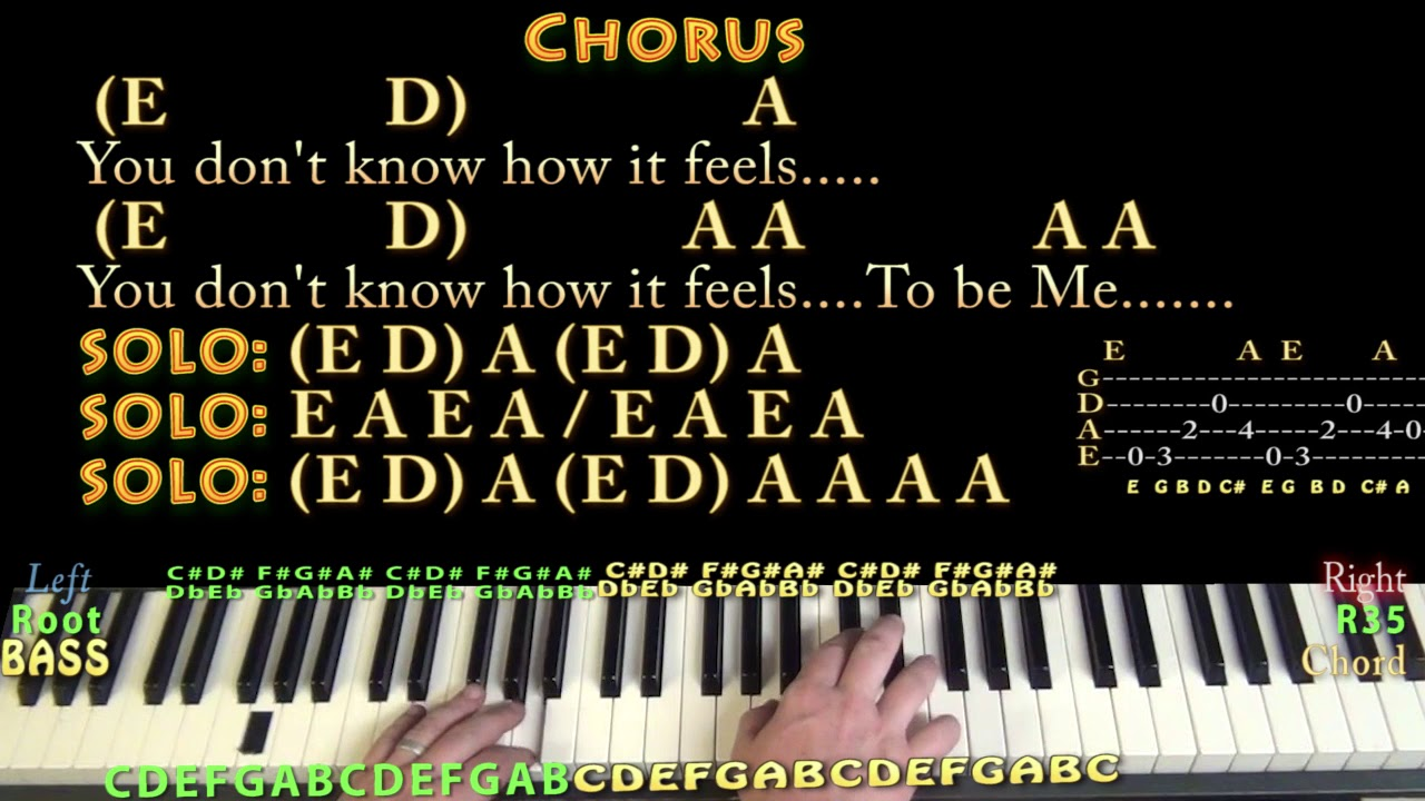 You dont know how it feels tom petty piano cover lesson with you dont know how it feels tom petty piano cover lesson with chordslyrics arpeggios hexwebz Image collections