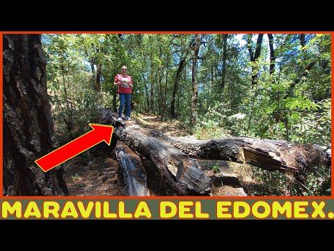 Parque nacional DESIERTO DEL CARMEN - RESERVA NATURAL Nixcongo Tenancingo