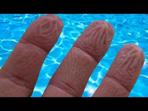 Derimiz suda neden buruşur 36