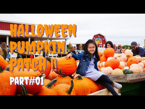 Where To Go For HALLOWEEN Pumpkin Patch Adventure || Part 1