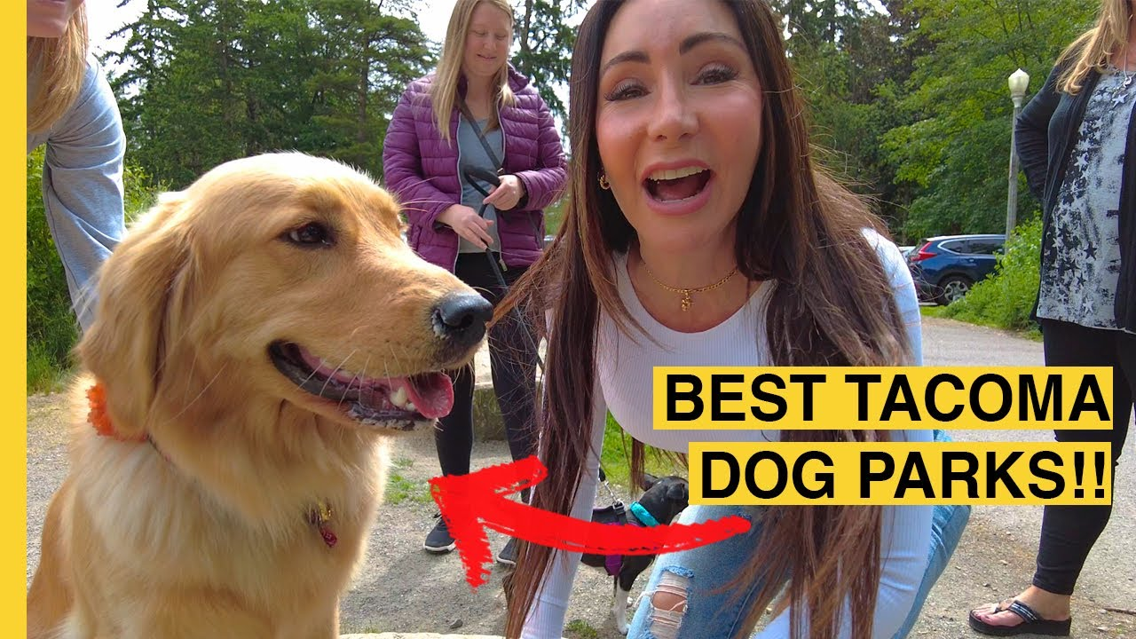 Anne Curry Homes | Top Dog Parks In Tacoma