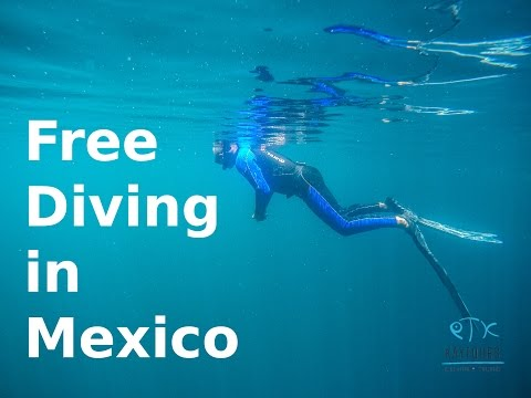 Travel Vlog Mexico 2016 - Free Diving at Tulum
