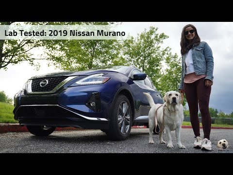 2019 Nissan Murano Platinum AWD: Andie the Lab Review!
