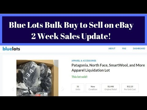 First bluelots Bulk Buy to Sell on eBay - Sales Update & Review after 2 Weeks