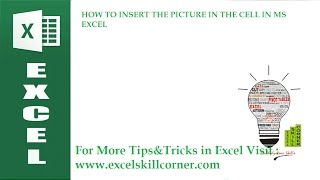 HOW TO INSERT THE PICTURE IN THE CELL IN MS EXCEL HD