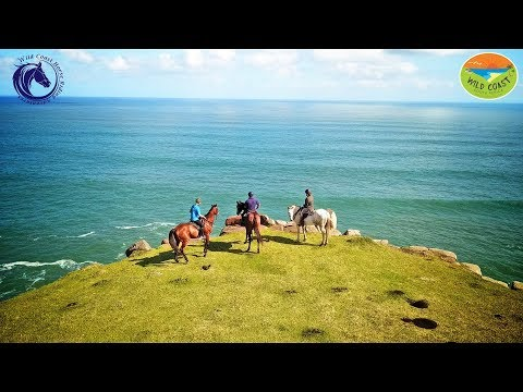 Wild Coast Horse Riding Adventures Kei Mouth South Africa
