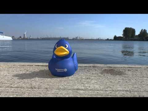 Cold Water Challenge - THW-Jugend Hamburg-Nord