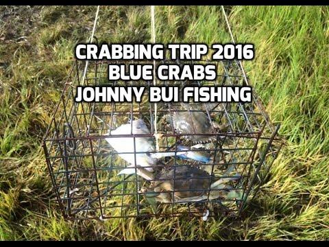 Crabbing Trip in NJ, 7/4/16