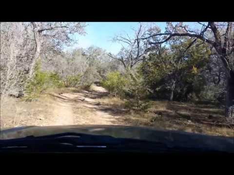 San Antonio TX - Bigfoot Woods