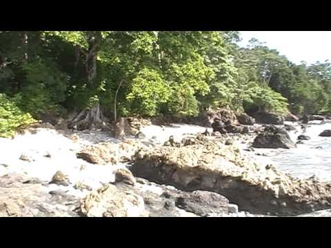 Lapa Rios Jungle Experience