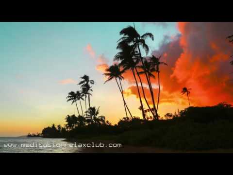 Natural Medicine Music: 3 HOURS Healing Relaxing Mindfulness Music for Inner Strength
