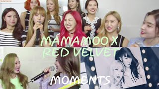 mamamoo x girlgroups edition red velvet