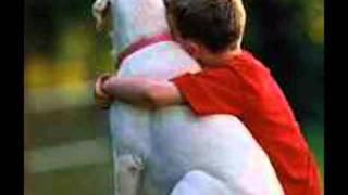 Baixar Só se tem saudade do que é bom,se chorei de saudade não foi por fraqueza,foi porque amei... *-*