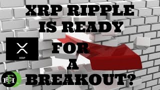 RIPPLE XRP IS READY FOR A BREAKOUT?!?! | GREAT GAINS ARE BEING MADE!!!!