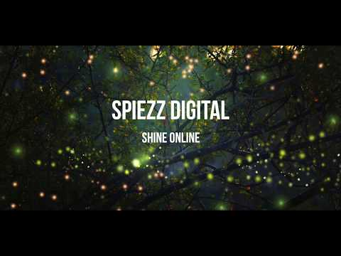 Spiezz Digital Wordpress Tutorial Widgets and Plugins thumbnail