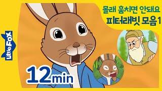 피터래빗 동화모음 1 | 장난꾸러기 토끼 피터래빗 | …