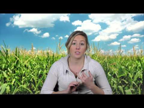 Iowans Debunk Midwest Stereotypes
