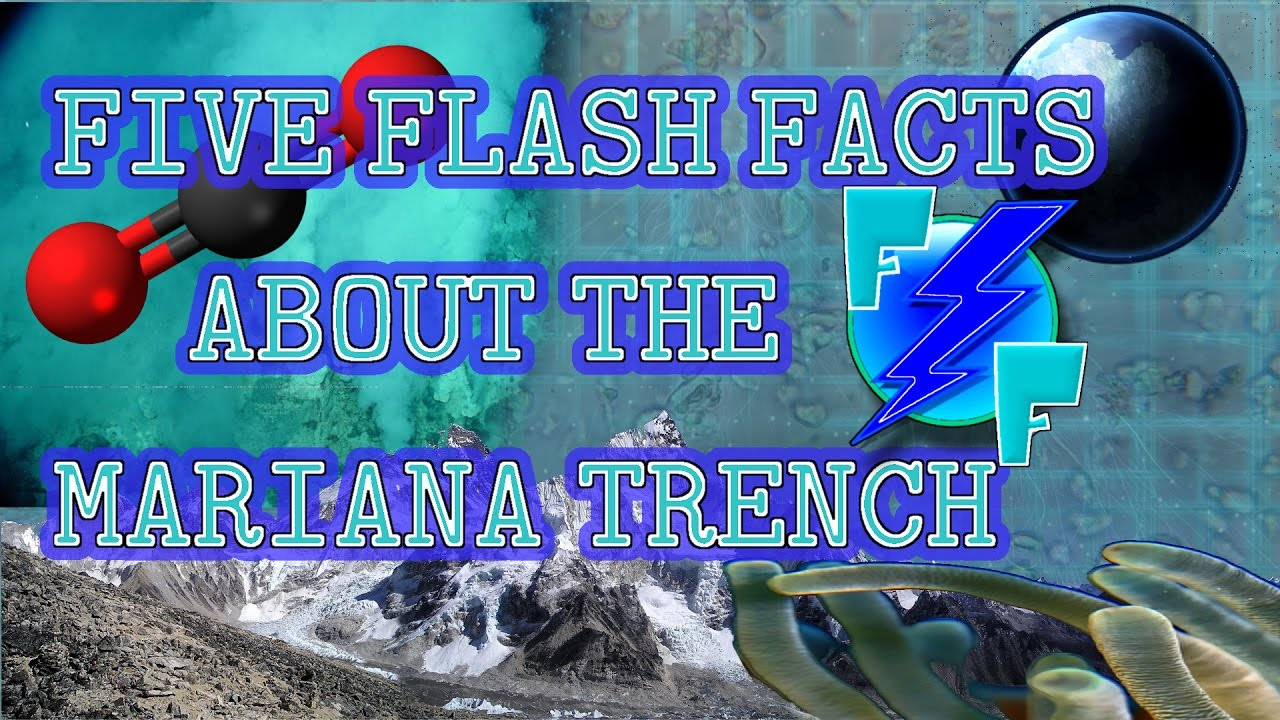 Five Flash Facts About The Mariana Trench