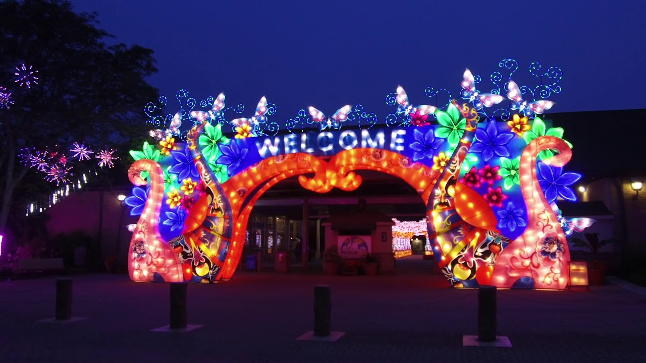 Zoo Lights 2020 Cleveland Christmas Cleveland Metroparks Zoo's 2019 Asian Lantern Festival   YouTube