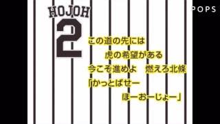 阪神 2017新応援歌メドレー(1.2倍速)