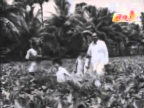 anbu sagotharargal muthukku muthaga mp3 songs