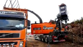 DH 811 L - Logs and Branches - Stammholz und Astmaterial