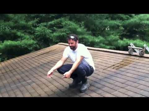 Shingle Roof Cleaning LLC Demonstration