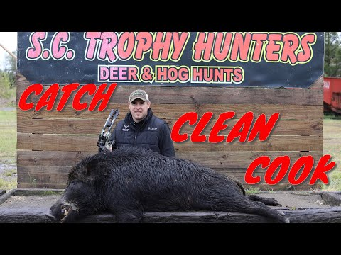 SOUTH CAROLINA HOG HUNTING{CATCH CLEAN COOK}