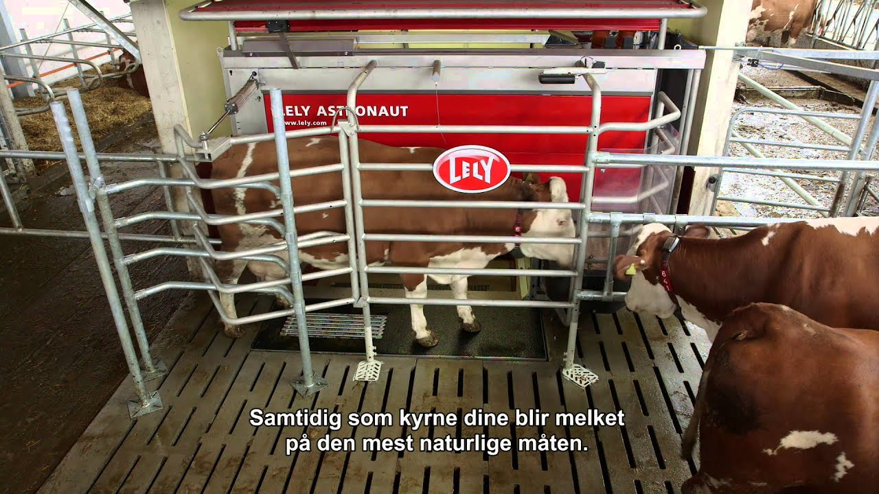 Lely Astronaut A4 - General (Norwegian)