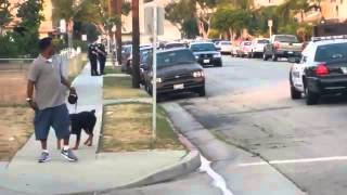 Hawthorne Police Shoot Rottweiler Dog While Arresting Its Owner (+18)