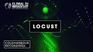 Purple Stories - Locust