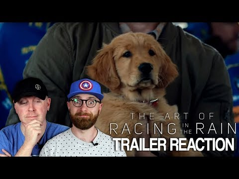 The Art of Racing in the Rain Trailer Reaction and Thoughts