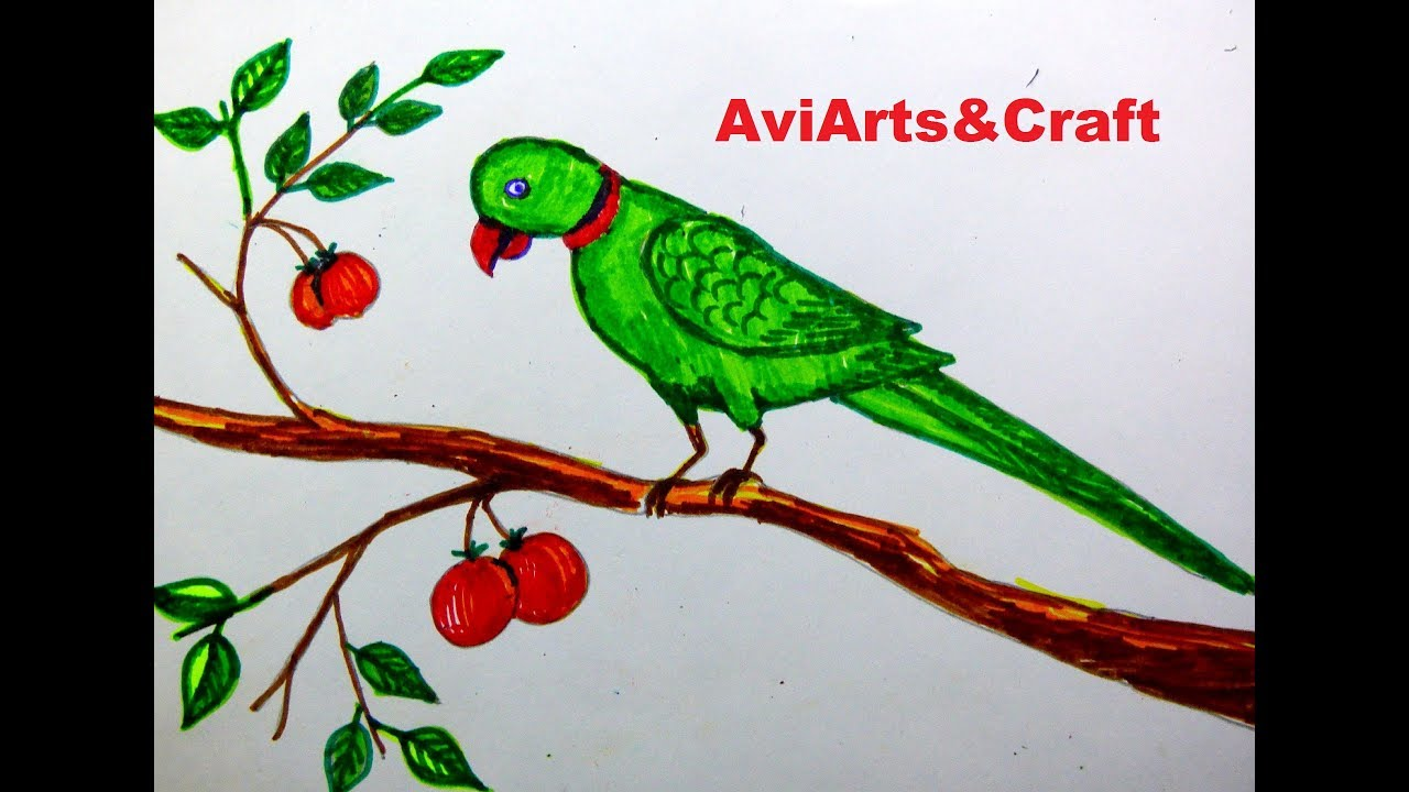 Easy Way To Draw A Parrot School Project Drawing Youtube
