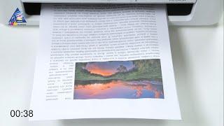 Typed js -  эффект печатания текста на сайте