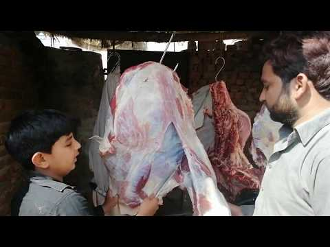 How To Cut Beef Meat    Beef Meat Cutting Skills    Amazing Meat Cutting Skills    Fast Food 786