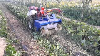 [대신종합농기계]다목적제초기(경운기용)DS-700[DaeShinAgricultureMachinary]