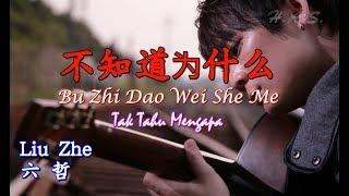 Download Lagu Bu Zhi Dao Wei She Me 不知道为什么 六哲 [Tak Tahu Mengapa] mp3