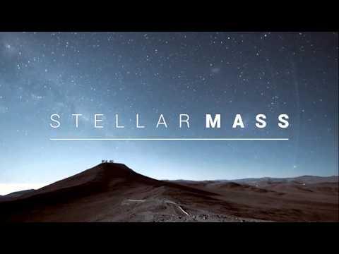 Stellar Mass