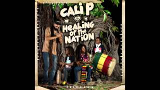 Cali P - United We Stand (HEMP HIGHER / ROOTDOWN MUSIC 2014)
